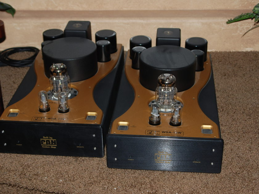PBN Audio WSA15WSE Single Ended Monoblocks