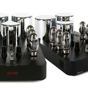 Ayon Audio Epsilon Mono Amps Pure Class A