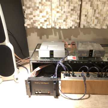 Esoteric Audio Research 549 Monoblock Amplifiers EXTREM...
