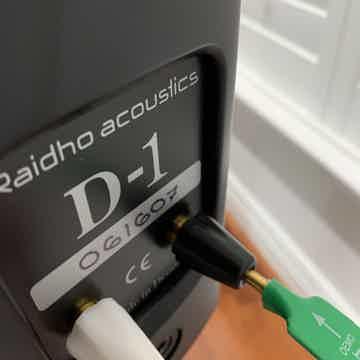 Raidho D1