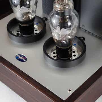 Aurorasound PADA-300B Hybrid Mono-blocks
