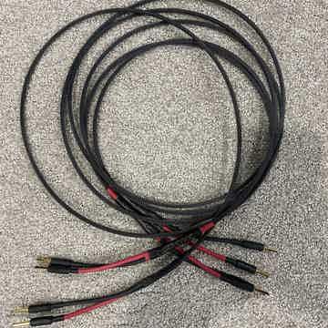 Au24 SE Speaker Cables