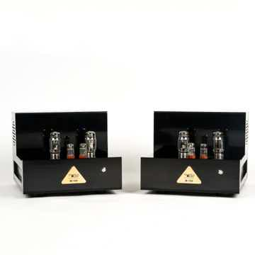 TriangleART M-100 Reference Tube Monoblock