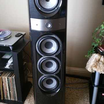 Focal 1038BE gray color
