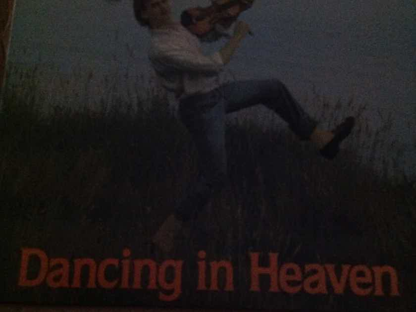 Walter Steading - Dancing In Heaven Animal Records Label Vinyl LP  NM