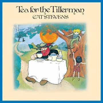 Tea For The Tillerman-Ltd ED 45rpm 2 200 gram LPs