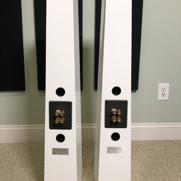 Totem Acoustic Tribe Towers Gloss White Pair
