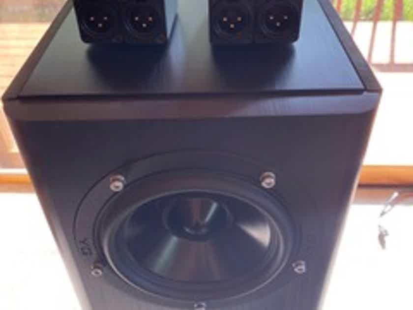 YG Acoustics Anat III Studio Signature w/MSB Sub Isolators