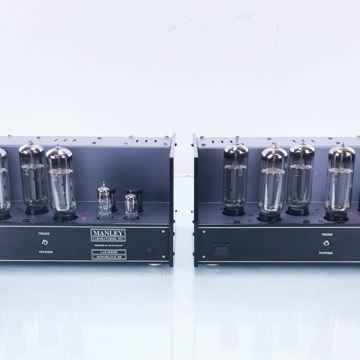Monoblock 100 Mono Tube Power Amplifier