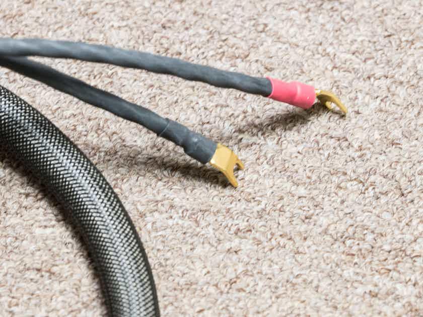 Transparent Audio Musicwave Ultra speaker cables 15ft