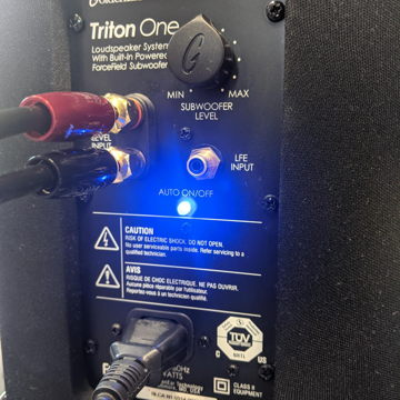 GoldenEar Technology Triton One