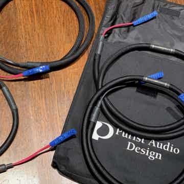 Purist Audio Design 25th Anniversary Luminist