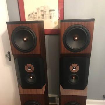 Tyler Acoustics D 20