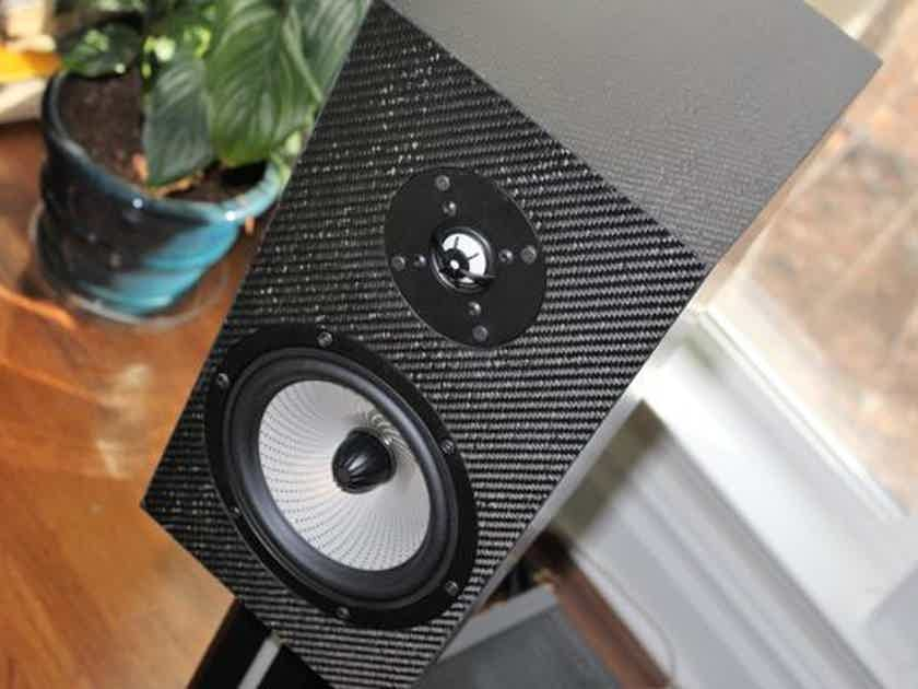 Pre-sale - Verdant Audio - Blackthorn 1 - Carbon Fiber Cabinets