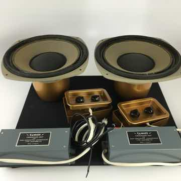 """Tannoy Gold 10"""" Drivers"""