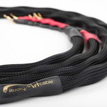 Audio Art Cable SC-5 ePlus  See the new Review at The S...