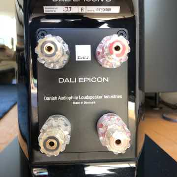 DALI Epicon 6