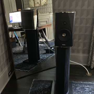 Sonus Faber Guarneri Evolution (and look at other compo...