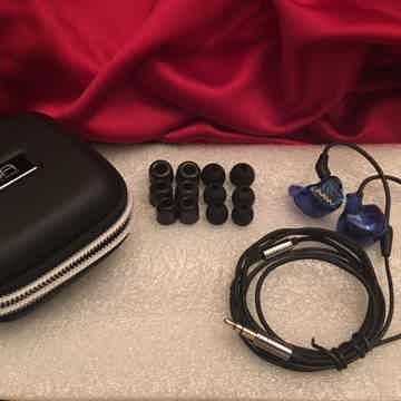 Advanced AcousticWerkes (AAW) W500