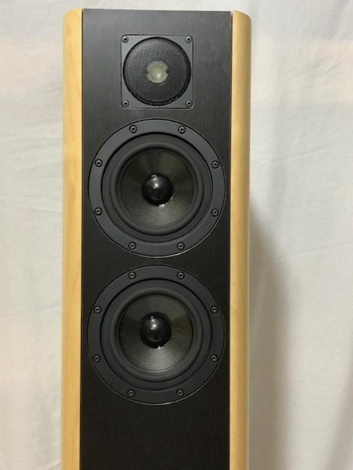 VAIC Audio