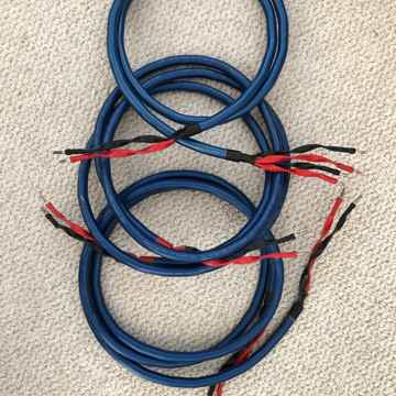 Wireworld Oasis 6 Speaker Cable - 8'