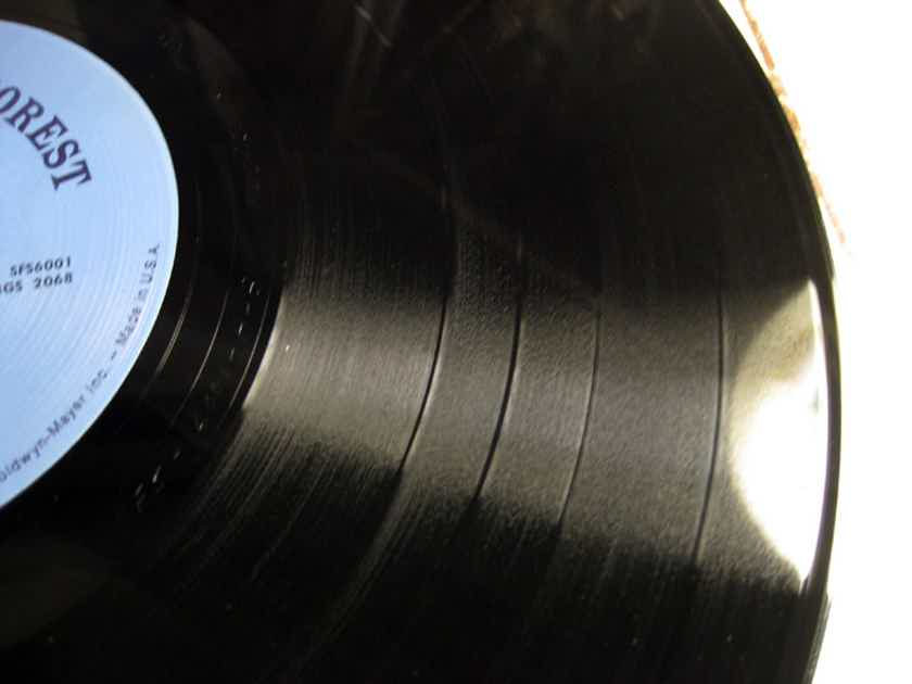 Richie Havens - Stonehenge - Original US Press  - 1969 Stormy Forest SFS-6001