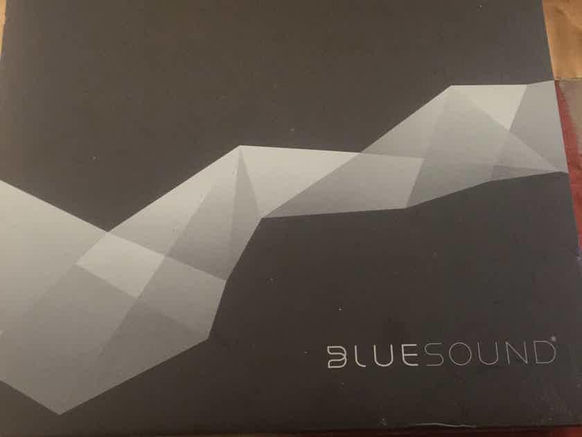 Bluesound Node 2