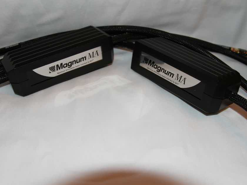 MIT Magnum MA