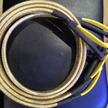 Golden Oval