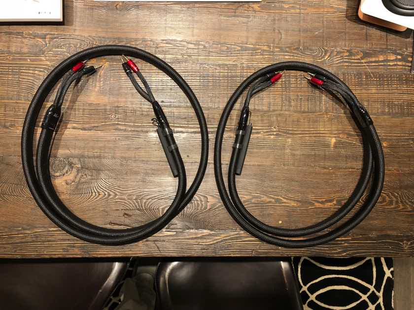 AudioQuest WEL Signature Speaker Cables 8'
