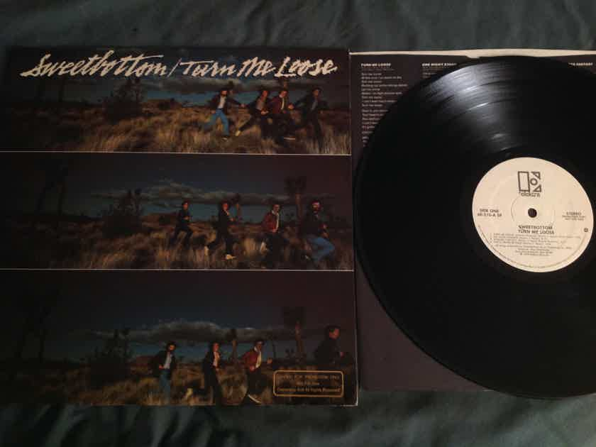 Sweetbottom Turn Me Loose Elektra Records White Label Promo LP