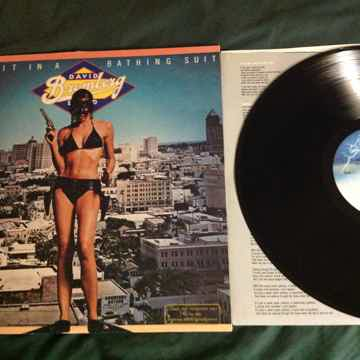David Bromberg Band - Bandit In A Bathing Suit Fantasy ...