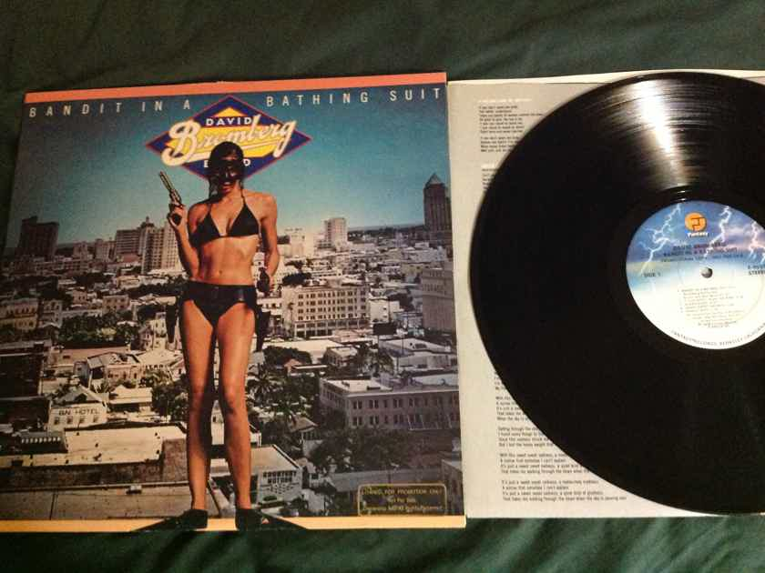 David Bromberg Band - Bandit In A Bathing Suit Fantasy Records Vinyl LP NM