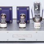 Concert Fidelity  DHS-300B