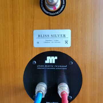Jean Marie Reynaud Bliss Silver