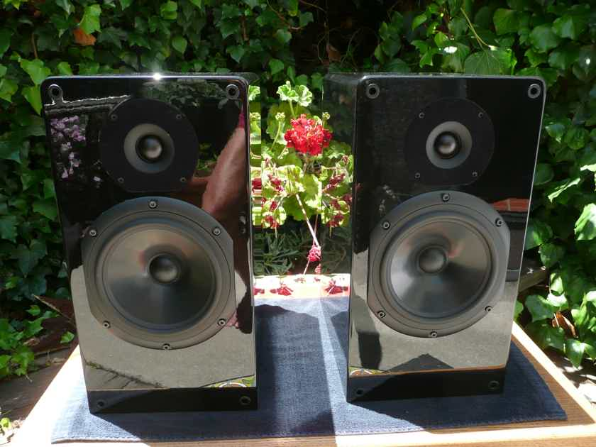 Nola Boxer 2-way monitors in piano black. Beautiful condition