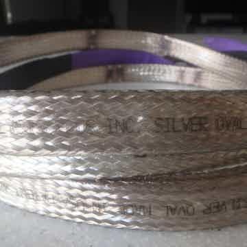 Big Silver Oval
