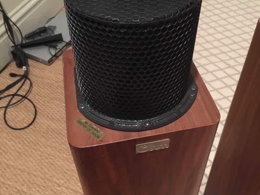 Ohm Acoustics Walsh Tall 1000
