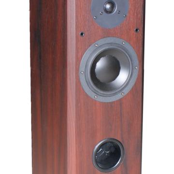 MFV3 Standard Floor Speaker
