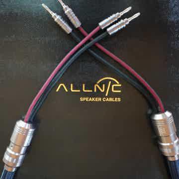 Allnic Audio ZL-8000s Pure Silver Speaker Cable