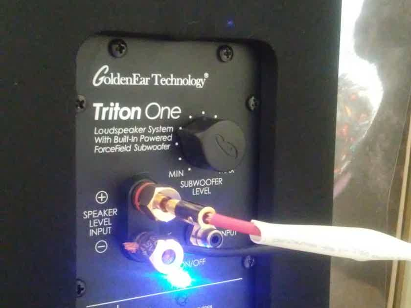 GoldenEar Technology Triton One *** Well Cared-For ***Local Sale Only, Albuquerque