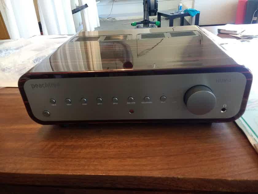 Peachtree Audio Nova 300