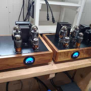 Aric Audio Super KT Push-Pull
