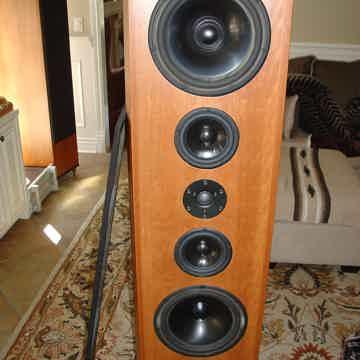 Tyler Acoustics Highland H2