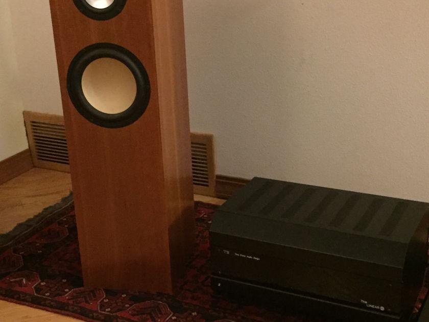Tom Evans Audio Design Linear B Tube monoblock power amplifier(s)