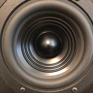 Platinum Audio Duo