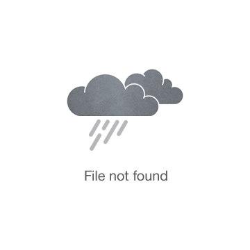 2006 Editor's Choice Award