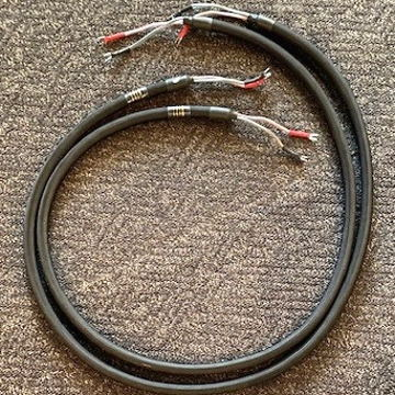 Harmmonic Technology Pro 11 Spk cables in 8'