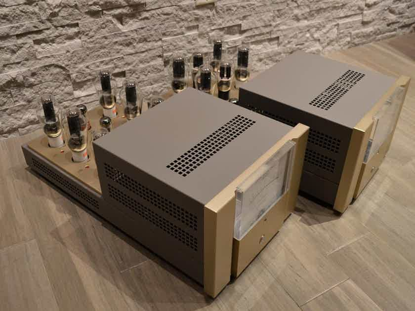 Canary Audio M600 Pure Class-A, Triode, Push-Pull Monoblock Amplifiers - Rare