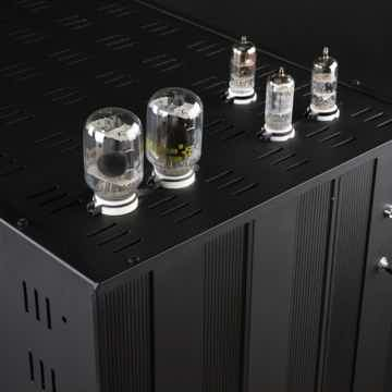 David Berning Co. ZOTL Custom Mono Block Amplifers